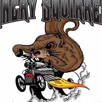 Angry Squirrel Customs and Fabrication LLC