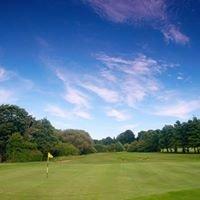 Sheffield Golf