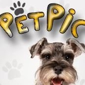 Pet Pic