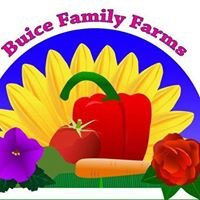 Buice Family Farms