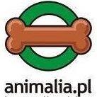 Animalia.pl