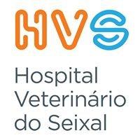 Hospital Veterinário Do Seixal