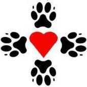 Four Paws Rescue-Logan, Utah-The Cats Lair