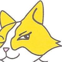 Yellow Cat Studio
