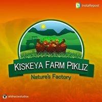 Kiskeya Farm