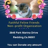 Faithful Feline Friends