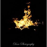 Beccadore Photography