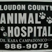Loudon County Animal Hospital