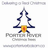 Porter River Christmas Trees