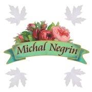 Michal Negrin Canada
