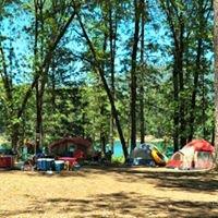 Shasta Lake Camping