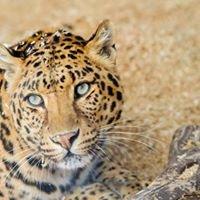 Barry R Kirshner Wildlife Sanctuary