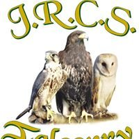 JRCS Falconry