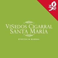 Viñedos Cigarral Santa María