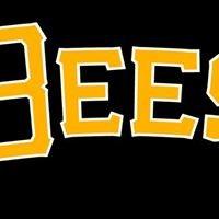 Salt Lake Bees/Utah Jazz Tickets/Energy Solutions Arena  Events