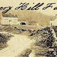 Avery Hill Farm