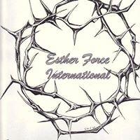 Eforce Fellowship