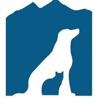Berthoud Animal Hospital