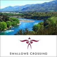Swallows Crossing Vineyard