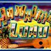Hawaiian Brian's