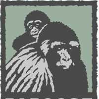 Papoose Conservation Wildlife Foundation