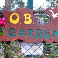 Ocean Beach Community Garden