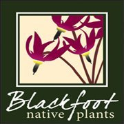 Blackfoot Native Plants Nursery, Missoula MT