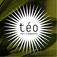 Teo Hair and Body Works