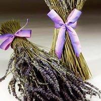 Sonoma Lavender Shop