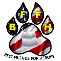Best Friends For Heroes