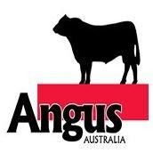 Angus Australia