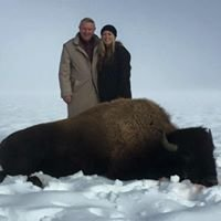 Oregon Trail Bison