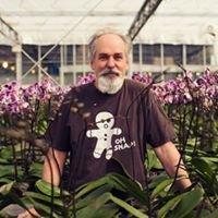 Orchidaceae, Inc.