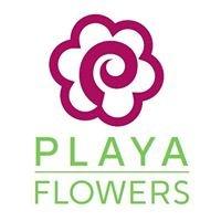 Playa Del Rey Florist