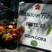 Brigham Farm Stand & Greenhouse