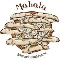Mahala Gourmet Mushrooms