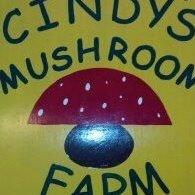 Cindy's Mushroom Farm