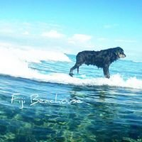 Fiji Beachouse