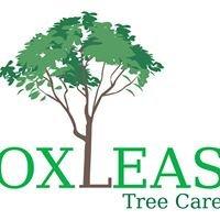 Oxleas Tree Care