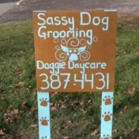 Sassy Dog Grooming Salon