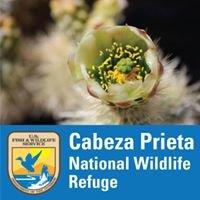 Cabeza Prieta National Wildlife Refuge