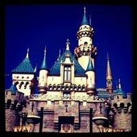 The Disneyland Hub