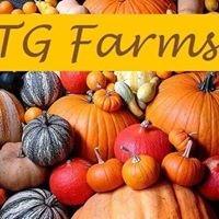 TG Farms