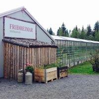Friðheimar Greenhouse