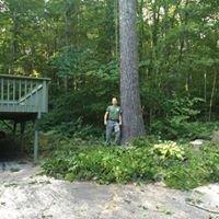 Bruns LLC.  Climbing Arborist