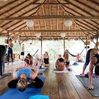 Yoga Retreats Ecuador