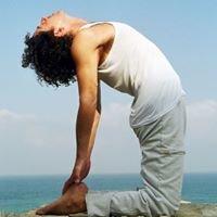 איינגאר יוגה ראשון לציון - Iyengar Yoga Rishon le Zion