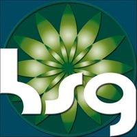 Holistic Services Group Australia