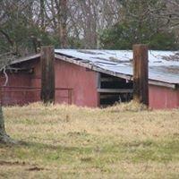 HoneyBear Ranch