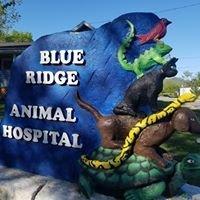 Blue Ridge Animal Hospital Inc.